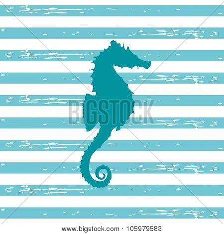 Seahorse Illustration