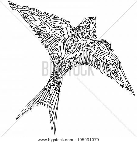 Decorative swallow bird. Graphic illustration swallow. handmade art illustration