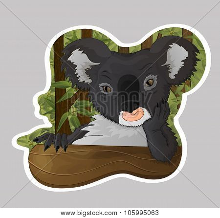 Thoughtful Koala In Eucalyptus Forest, Vector Art