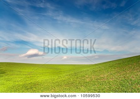Green Field Is Under Blue Sky