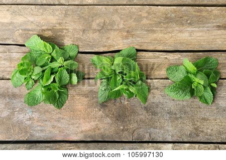 Three bunches of mint on wooden background
