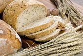 Постер, плакат: Зерно хлеб 8