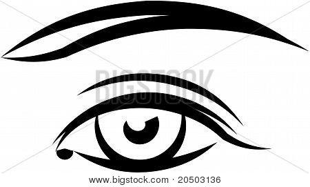 Beautiful female eye. Vector illustration