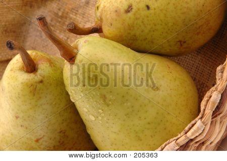 Bartlett Pears Horizontal