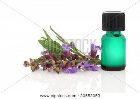 Sage Herb Essence