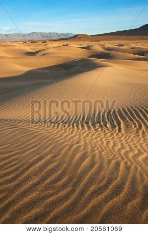 Desert Ripples