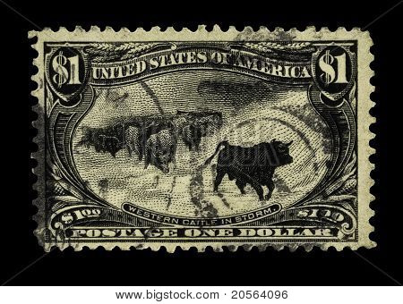 Usa 1898 Stamp-western Cattle In Storm