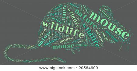 Wordcloud de rata