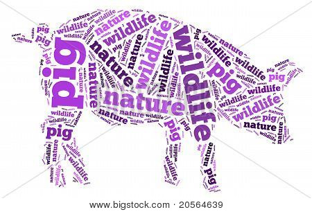 Wordcloud of pig