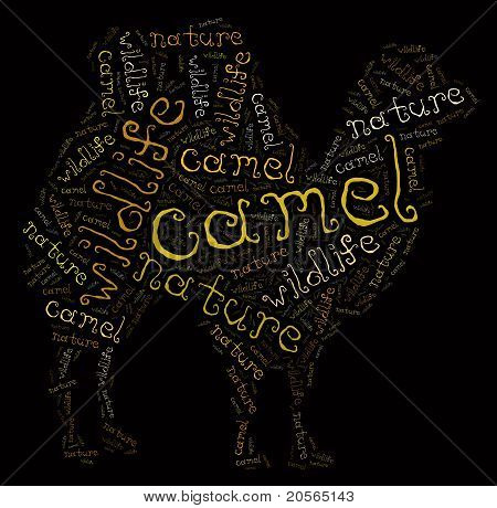 Wordcloud of camel