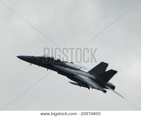 USA Airforce F-18