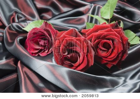 Three Red Roses On Iridescent Silk