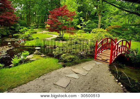 Japanese Garden with red bridge