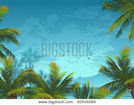 Tropical background with palm trees and birds