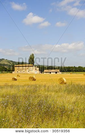 Farm In Umbria