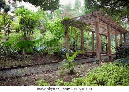 Wooden Pergola with footpath through in park