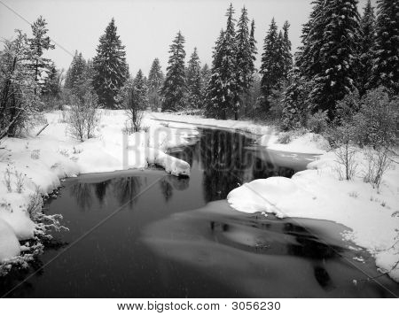 Winter Landscape With A River And Pine Trees