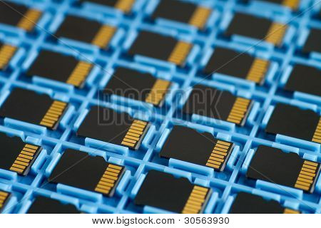 Microsd Memory Cards On A Tray