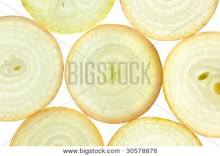 Slices of fresh Onion / background / back lit