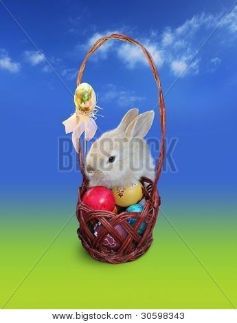 Cute Easter bunny  with Easter eggs basket, isolated over blue - green background