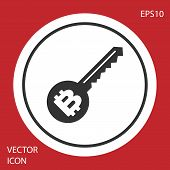 Grey Cryptocurrency Key Icon Isolated On Red Background. Concept Of Cyber Security Or Private Key, D poster