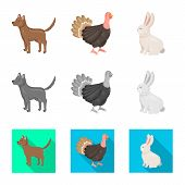 Vector Design Of Breeding And Kitchen  Sign. Collection Of Breeding And Organic  Stock Vector Illust poster