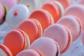 Close Up View Of Colorful Macarons For Sale In Showcase Of Candy Shop, Cafe Or Bakery. Traditional F poster