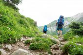 Hiking In Mountains. Tourists With Backpacks Hiking In Mountain Trail. Trekking poster