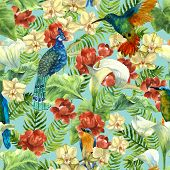 Tropical Pattern With Paradise Birds, Flowers And Palms poster