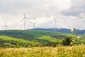 Wind Farm Eco Field On Hills With Green Grass And Flowers poster