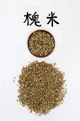 Pagoda tree flower bud herb used in chinese herbal medicine with script. Used for intestinal & haemo poster