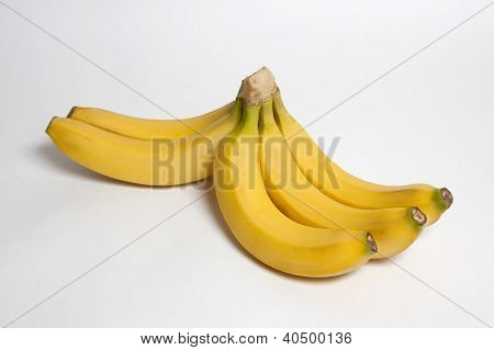 Bananas With Monkey