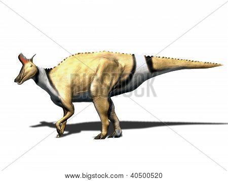 Lambeosaurus