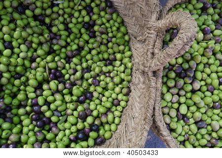 Baskets of olives