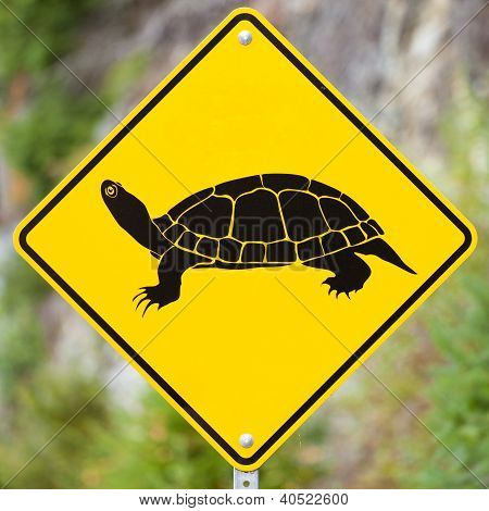 Attention Turtles Crossing animal road sign