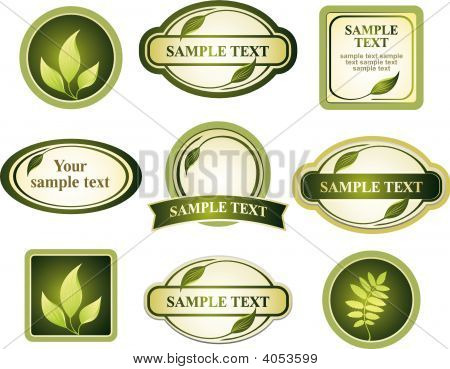 Vector Set Of Design Elements And Frames
