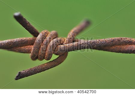 Coiled metal wire and rusty