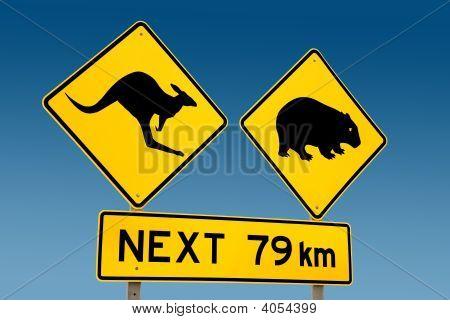Kangaroo And Wombat Warning Sign Australia