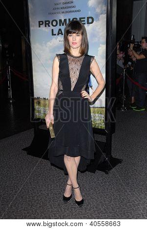 LOS ANGELES - DEC 6:  Rosemarie DeWitt arrives at the 'Promised Land' Premiere at Directors Guild of America on December 6, 2012 in Los Angeles, CA