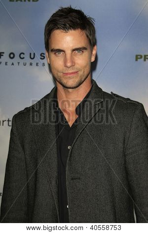 LOS ANGELES - DEC 6:  Colin Egglesfield arrives at the 'Promised Land' Premiere at Directors Guild of America on December 6, 2012 in Los Angeles, CA