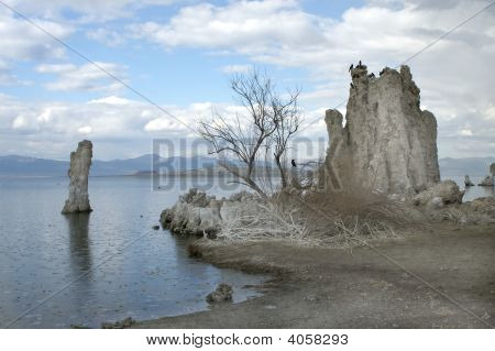 Tufa formations on Mono Lake Eastern Sierras