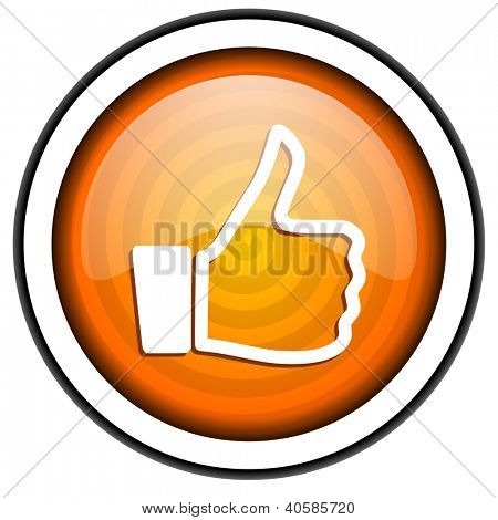 thumb up orange glossy icon isolated on white background