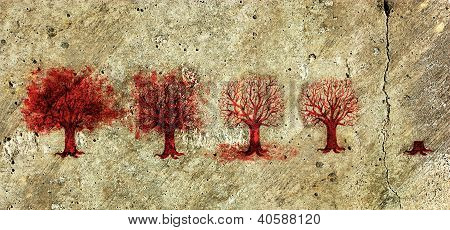 Process of the Tree Life in Five Stages.