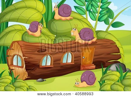Illustration of snails and wood house in green nature