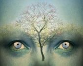 pic of surrealism  - Beautiful artistic fantasy background representing a two human eyes and a tree - JPG