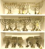 picture of tora  - many golden colour jewish chandeliers menorah on display - JPG
