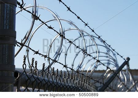 Sharp wire fence