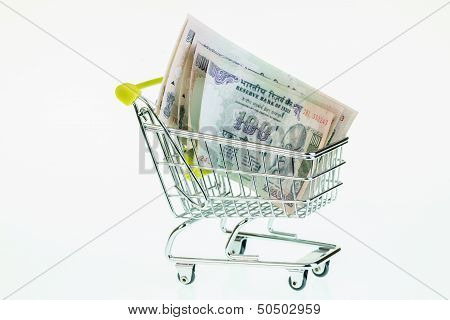 Indian Rupees In Shopping Cart