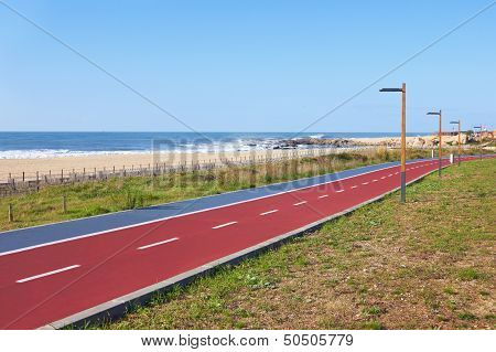 Bicycle Lanes