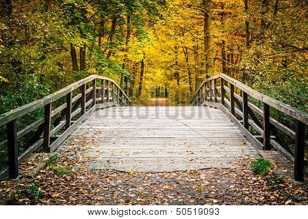 Wooden bridge in the autumn park